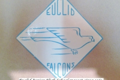 Euclid-JRHigh-Falcon-Logo